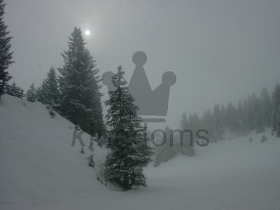 Misty Snow In The Alps