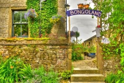 Bongo Bongo Land