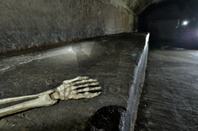 Underground Bones