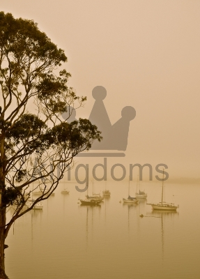 Yachts In The Mist