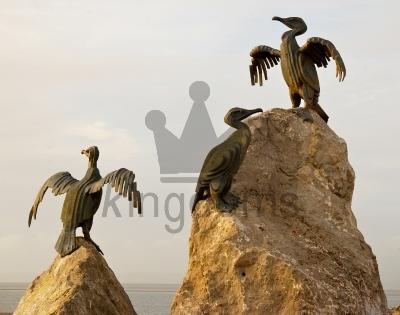 Morecambe Seagulls