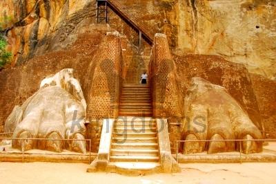 Lions Paw At Sigiriya