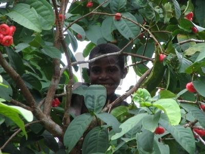 Tribal Child In Papua New Guinea Rainforest