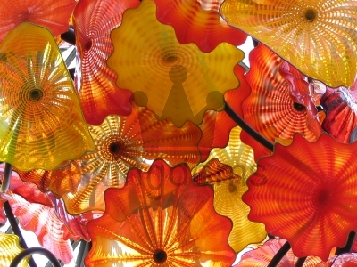 Chihuly Glass Installation
