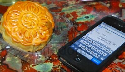 Mooncake With Translation