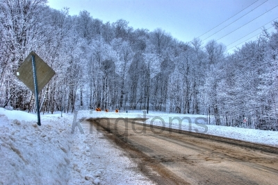 Wintery Forest Road